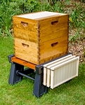 Ultimate Hive Stand/ Spring special for March!