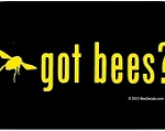 Vinyl Bee Decal (Got Bees?)