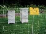Electric Fence Kit