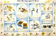 Beekeepers Year Wall Chart